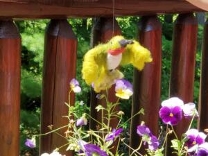 Needle felted hummingbird
